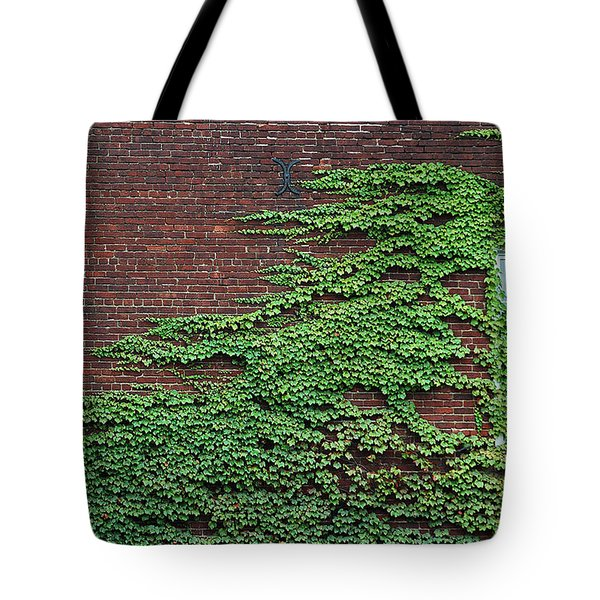 Tote Bag featuring the photograph Ivy Covered Window by Gary Slawsky