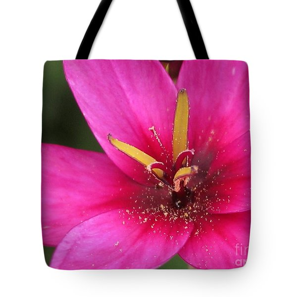 Tote Bag featuring the photograph Ixia Named Venus by J McCombie