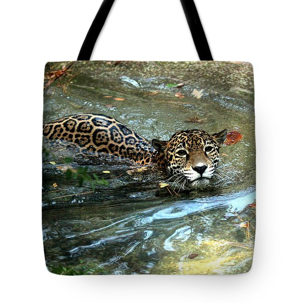 Tote Bag featuring the photograph Jaguar In For A Swim by Kathy  White