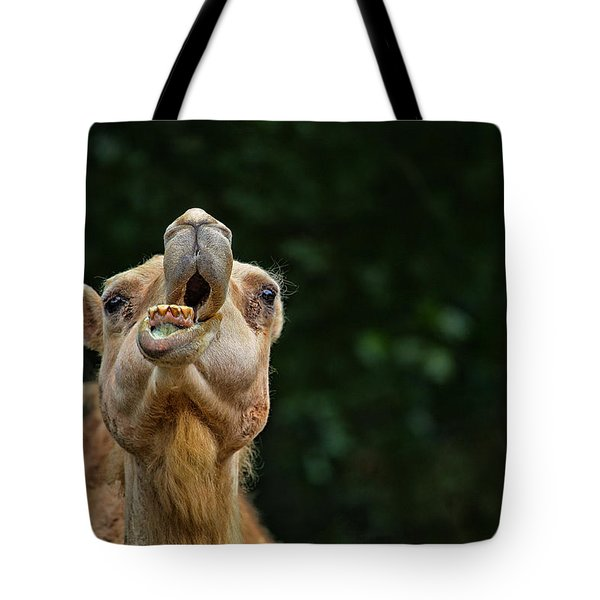 Jaw Dropping Tote Bag by Karol Livote