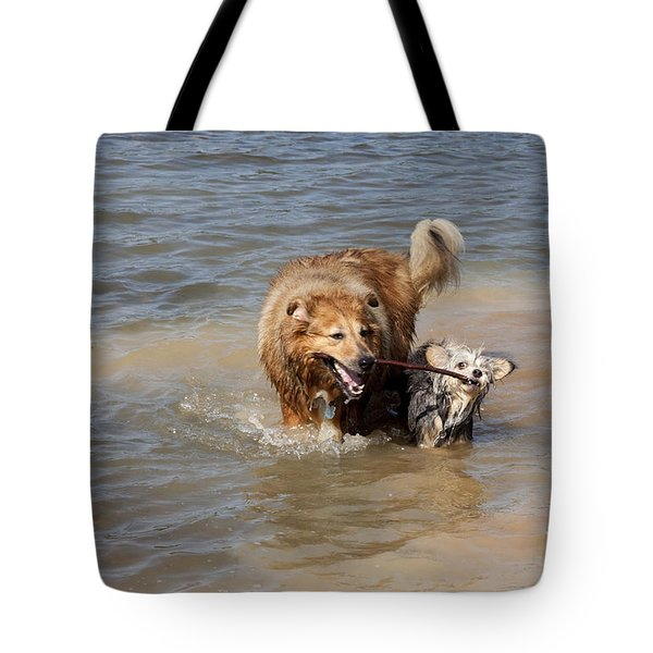 Jesse And Gremlin Sharing Tote Bag by Jeannette Hunt