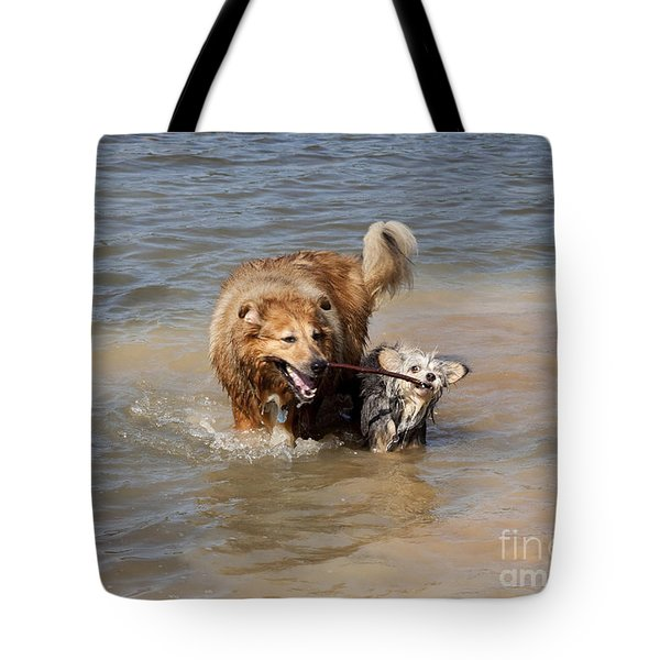 Jesse And Gremlin Sharing Tote Bag