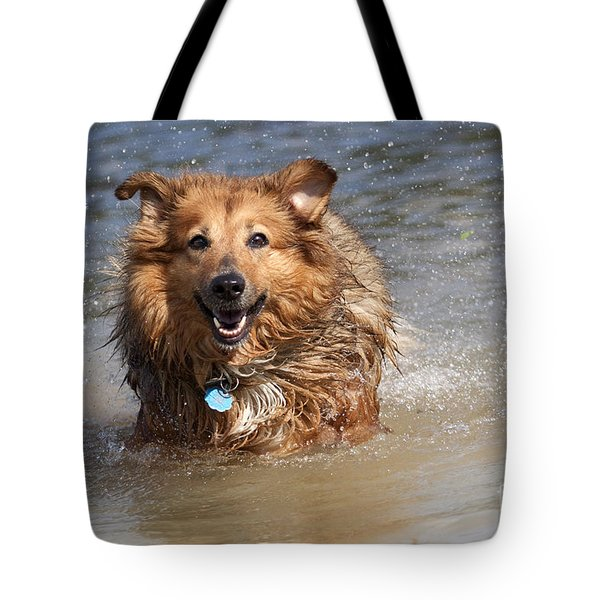 Jesse Tote Bag by Jeannette Hunt