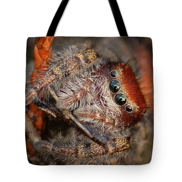 Jumping Spider Portrait Tote Bag