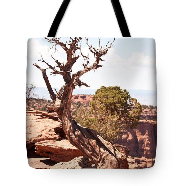 Juniper - Colorado National Monument Tote Bag by Bob and Nancy Kendrick