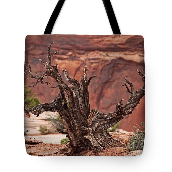 Juniper At Canyonlands Tote Bag by Bob and Nancy Kendrick