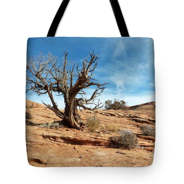 Juniper On Slickrock Tote Bag by Bob and Nancy Kendrick