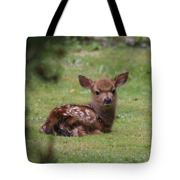 Just Born Bambi Tote Bag by Kym Backland