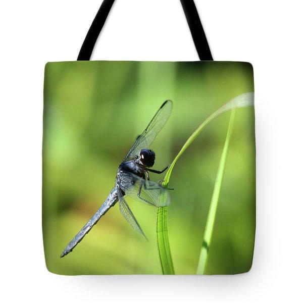 Just Hanging On Tote Bag by Karol Livote