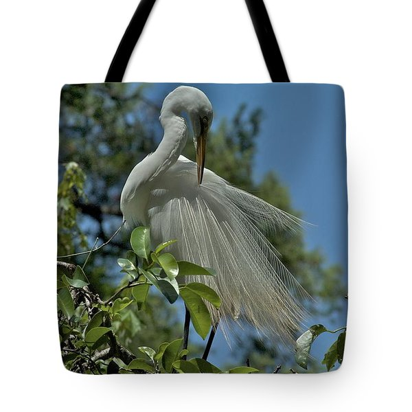 Tote Bag featuring the photograph Just So by Joseph Yarbrough