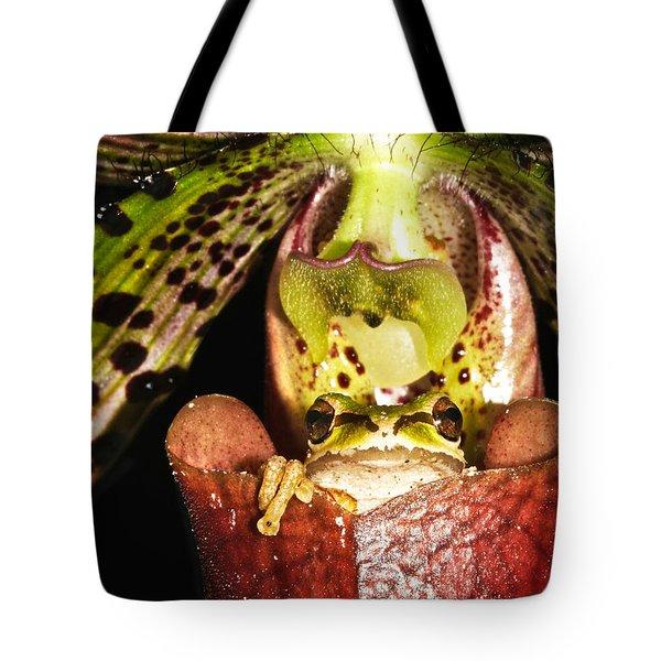 Kangaroo Frog Tote Bag by Jean Noren