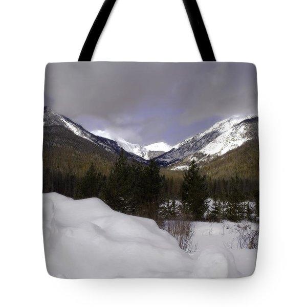 Kawuneeche Valley - Rocky Mountain National Park Tote Bag by Ellen Heaverlo