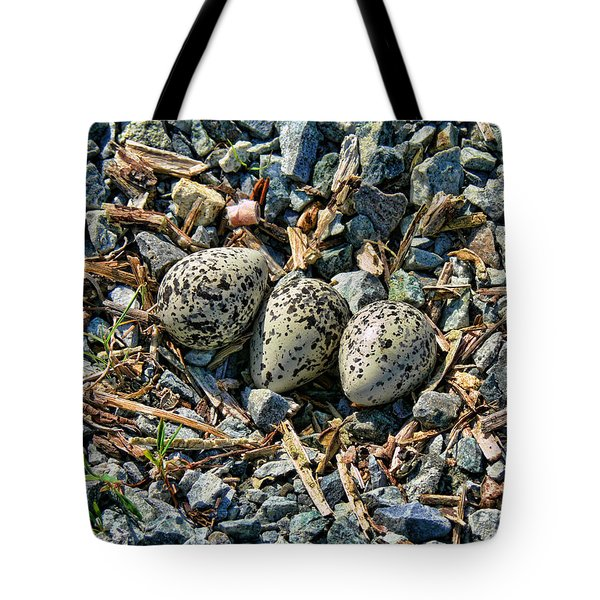 Killdeer Bird Eggs Tote Bag