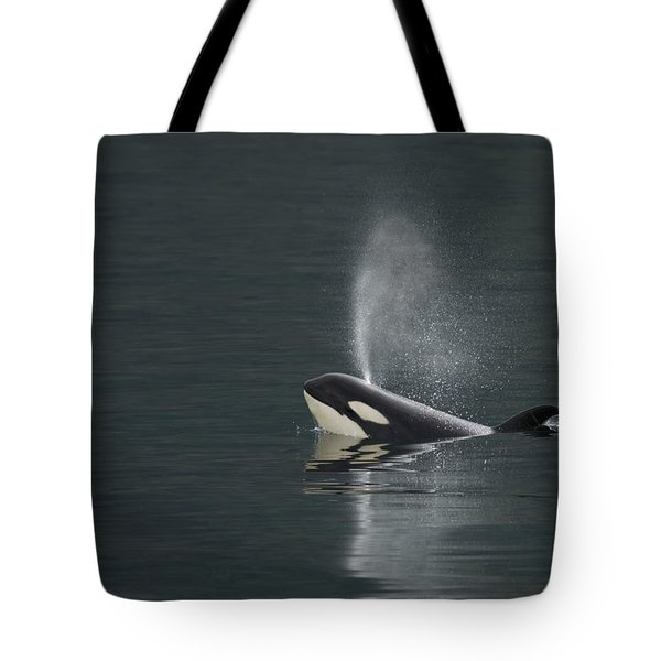 Killer Whale Calf Blows As It Surfaces Tote Bag by Ralph Lee Hopkins