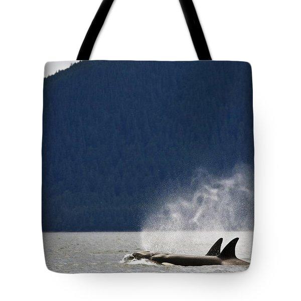 Killer Whales, Alaska, Usa Tote Bag by Richard Wear