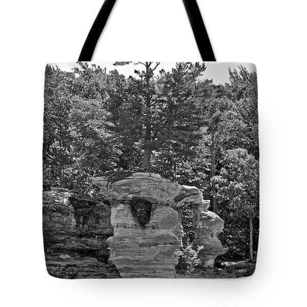 King Of The Hill Pictured Rocks Tote Bag by Michael Peychich