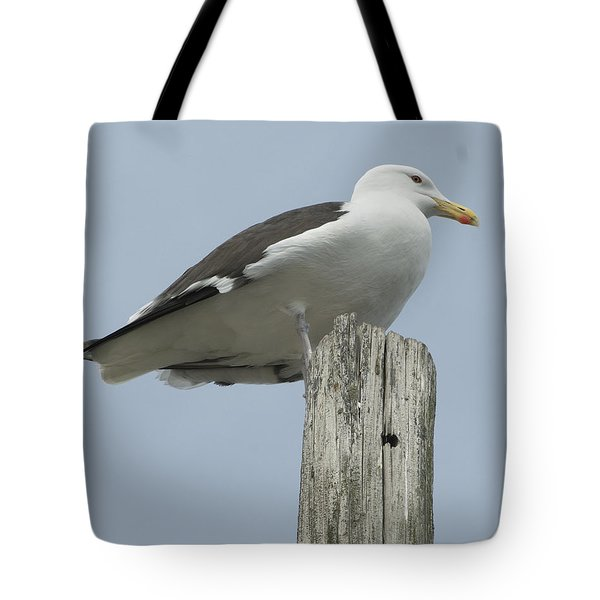 King Of Wickford Harbor Tote Bag