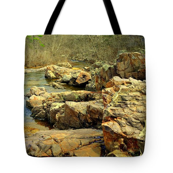 Tote Bag featuring the photograph Klepzig Shut In by Marty Koch
