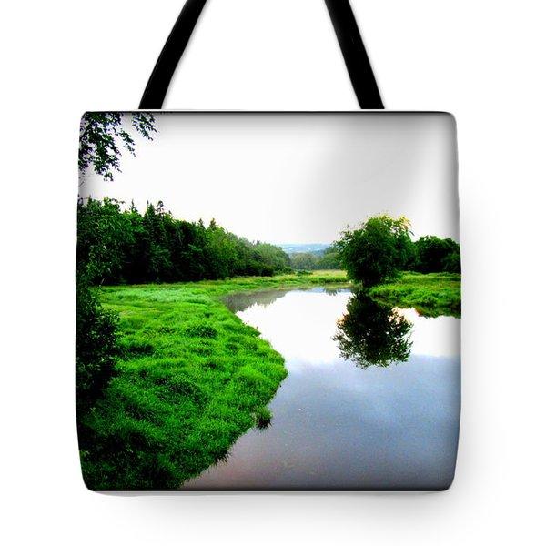Tote Bag featuring the photograph Lac St-fer  Quebec by Danielle  Parent