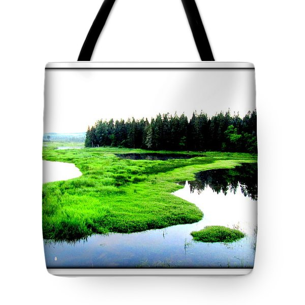 Lac Williams Quebec  Tote Bag by Danielle  Parent
