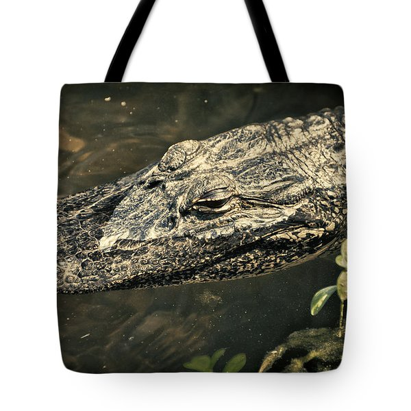 Lady Alice Queen Of The Lake Tote Bag by Joan Carroll