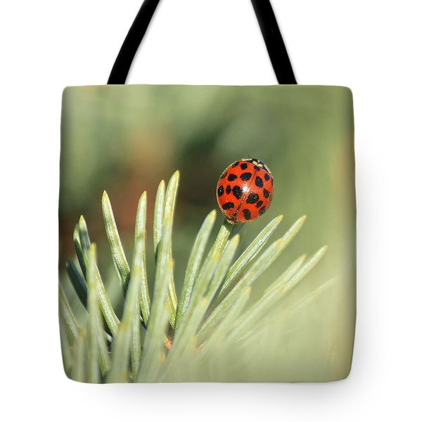 Tote Bag featuring the photograph Lady Beetle On A Needle by Penny Meyers