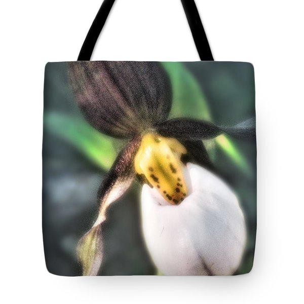 Lady Slipper 2 Tote Bag by Janie Johnson