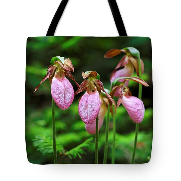 Lady Slippers Everywhere Tote Bag