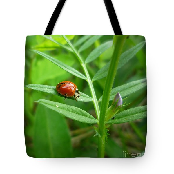 Tote Bag featuring the photograph Ladybug And Bud by Renee Trenholm