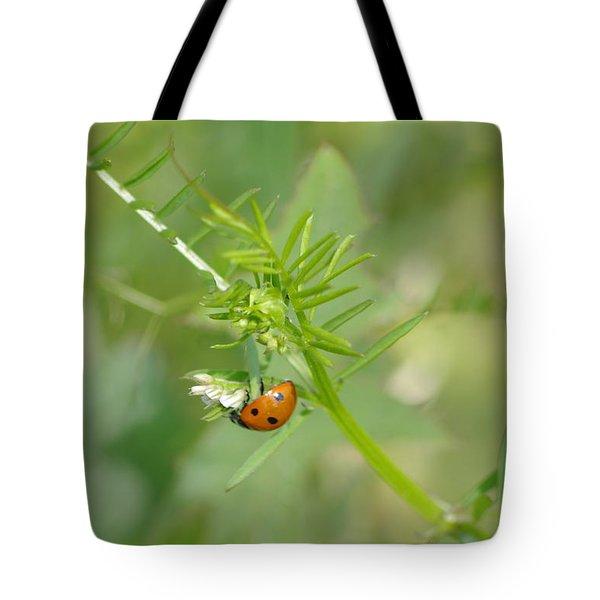 Ladybug Tote Bag by Tannis  Baldwin