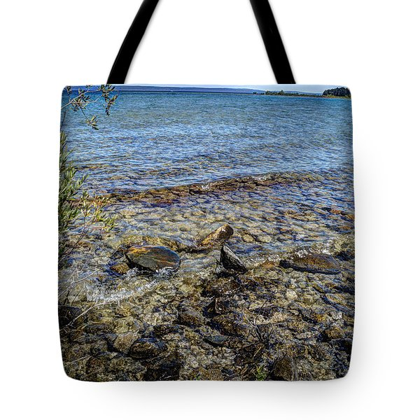 Lake Michigan 1 Tote Bag by Janice Adomeit