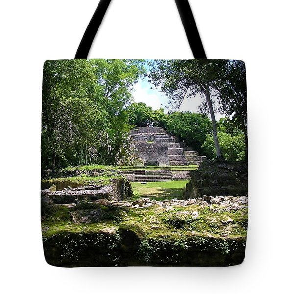 Tote Bag featuring the photograph Lamanai- Belize by Li Newton