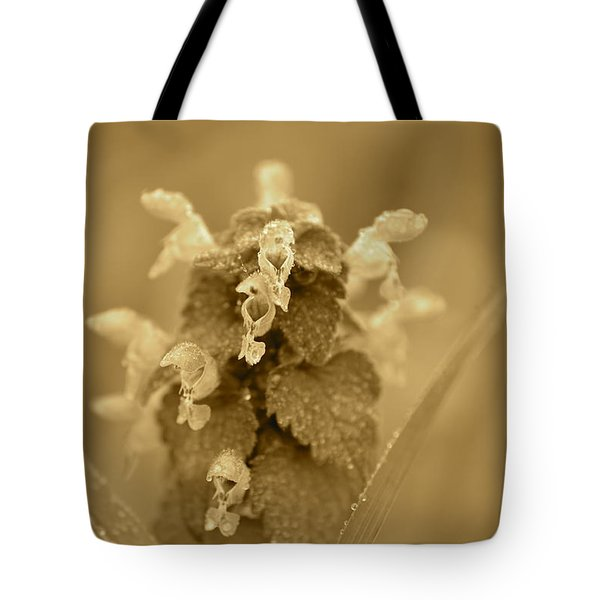 Lamium In Sepia Tote Bag by JD Grimes