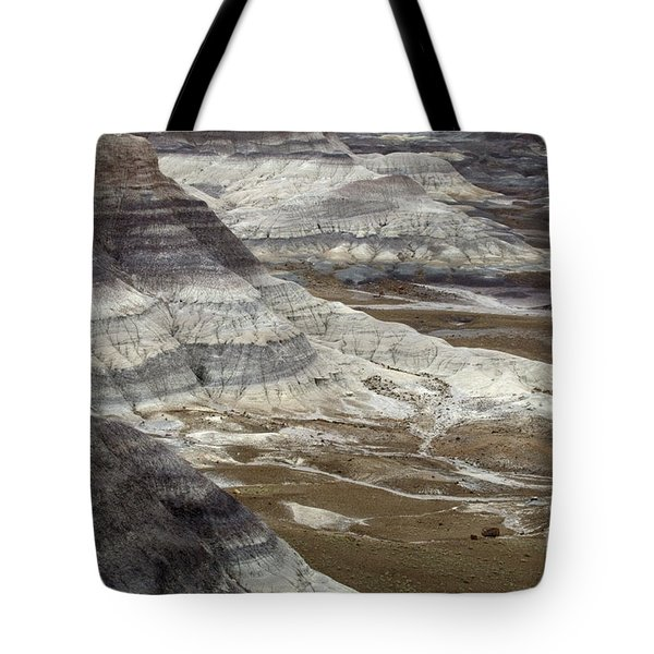 Landscape Petrified Forest Tote Bag