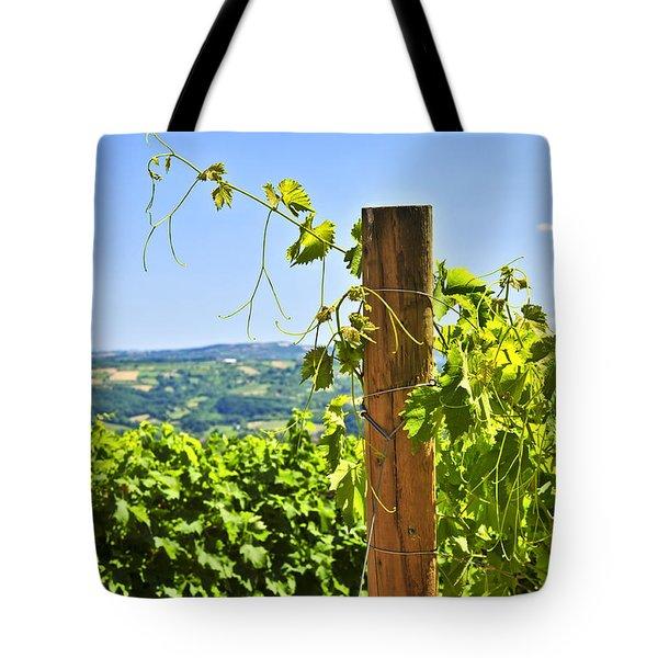 Landscape With Vineyard Tote Bag by Elena Elisseeva