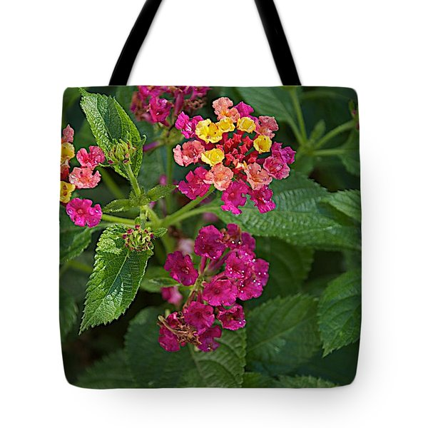 Tote Bag featuring the photograph Lantana by Joseph Yarbrough