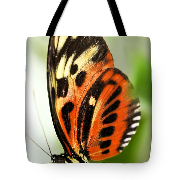 Large Tiger Butterfly Tote Bag by Elena Elisseeva