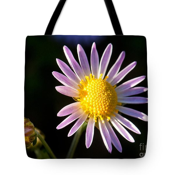 Tote Bag featuring the photograph Last Ray Of Sun by Jim Moore
