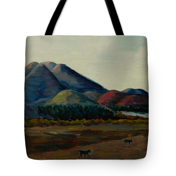 Late Afternoon, Peru Impression Tote Bag