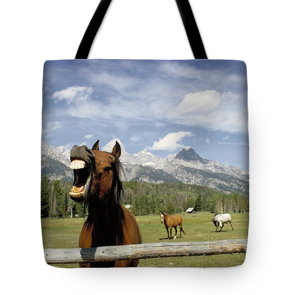 Laughing Horse Tote Bag by Porterfld and Chickerng and Photo Researchers