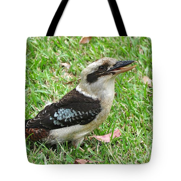 Laughing Kookaburra Tote Bag by Kaye Menner