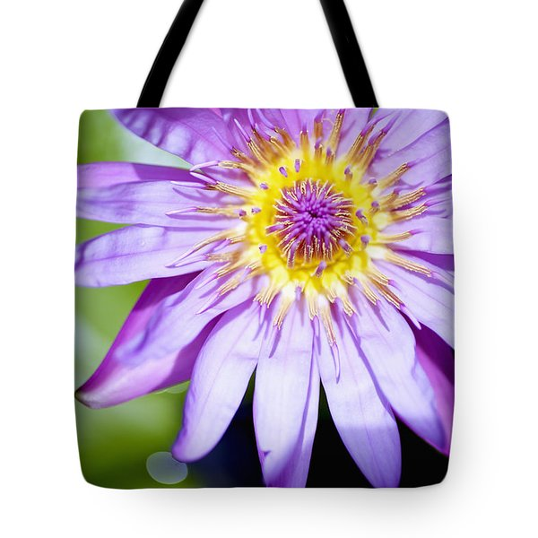 Lavendar Water Lily Tote Bag by Kicka Witte