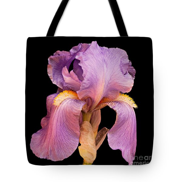 Lavender Beauty Tote Bag by Andee Design