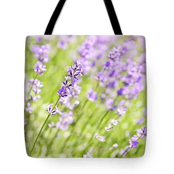 Lavender Blooming In A Garden Tote Bag by Elena Elisseeva