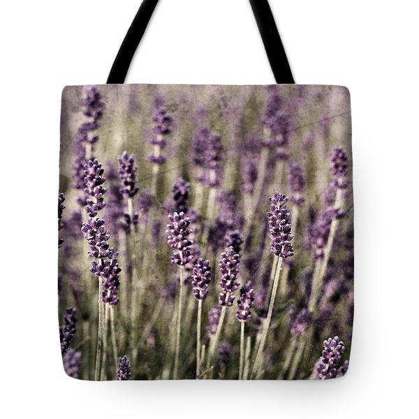 Lavender Field Tote Bag by Laura Melis