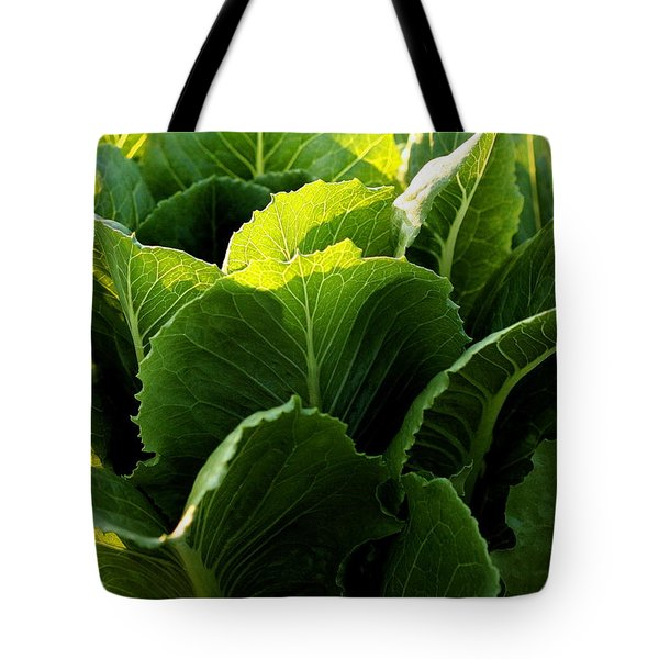 Layers Of Romaine Tote Bag by Angela Rath
