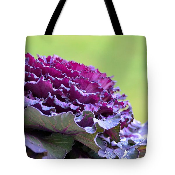 Layers Of Wet Beauty Tote Bag by Sandi OReilly
