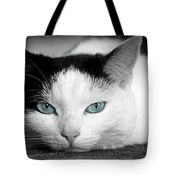 Lazy Cat Tote Bag by Claudia Moeckel