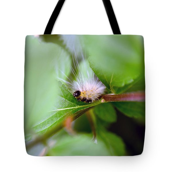 Leaf For One Tote Bag