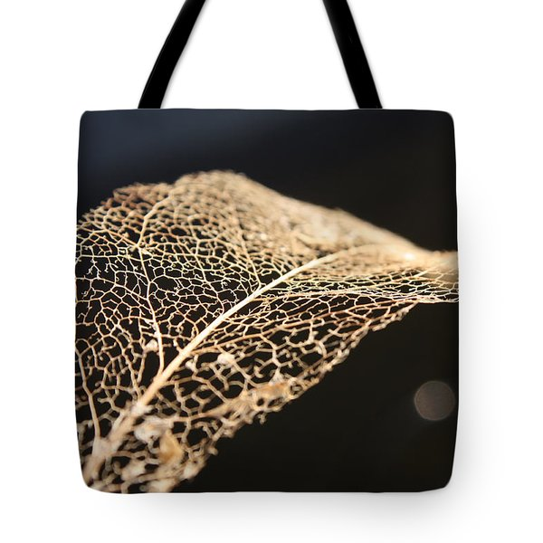 Tote Bag featuring the photograph Leaf Skeleton by Cathie Douglas